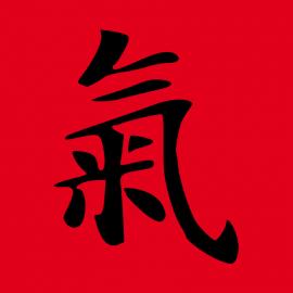 TCM (Traditionelle Chinesische Medizin)